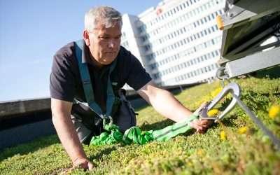 Wallaard Vegetatiedaken zoekt een leergierige medewerker Groen