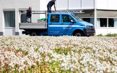 Wallaard Vegetatiedaken zoekt een Meewerkend Voorman Groen